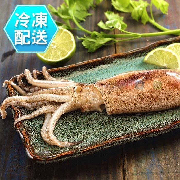 新鮮魷魚串200g 燒烤 冷凍配送[CO000136]健康本味