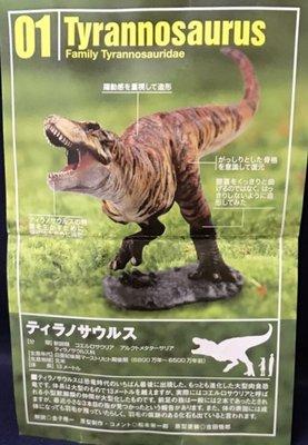 KAIYODO 海洋堂 ダイノテイルズ7 恐竜模型図鑑 日本 Lawson 限定 恐龍模型圖鑑 (Tryannosaurus 暴龍)