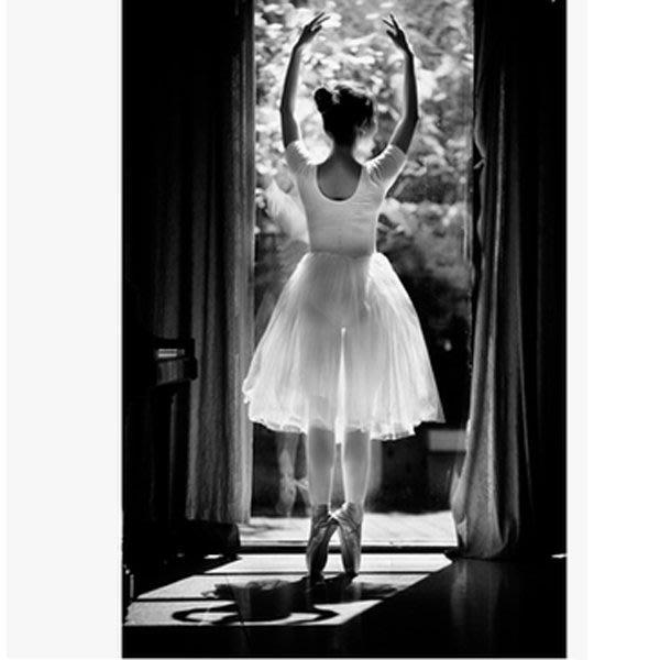 5Cgo【鴿樓】會員有優惠  41603005455 芭蕾舞蹈裙成人芭蕾舞紗裙演出服黑白天鵝舞裙羽毛芭蕾寫真服芭蕾舞衣