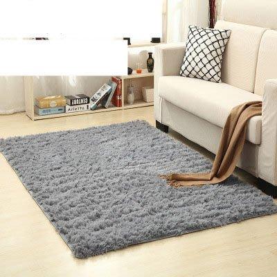 PS 樂【CJ014】加厚水洗絲毛防滑地毯40*60cm