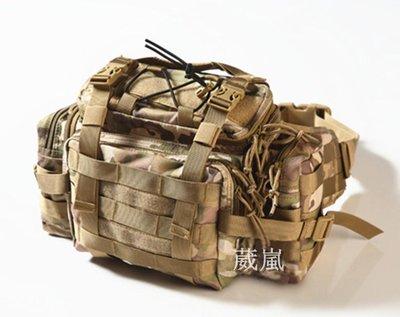 聖甲蟲 戰術 背包 多地形( 槍盒 槍箱 槍袋 槍包 旅遊 登山 烤肉 露營 槍包 書包 生存遊戲 軍事風 迷彩