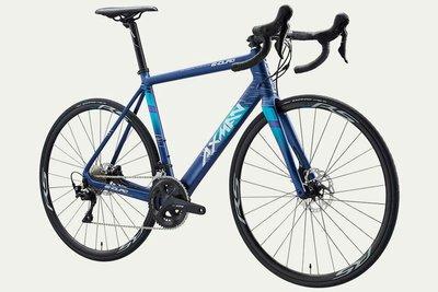 (J.J.Bike) AXMAN Enduro C1 Disc 適合長途 碳纖維碟煞公路車 貫通軸