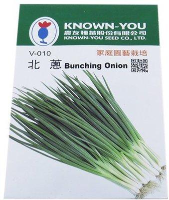 {綠花緣} 農友 北蔥 (Bunching Onion) - 蔬菜種子