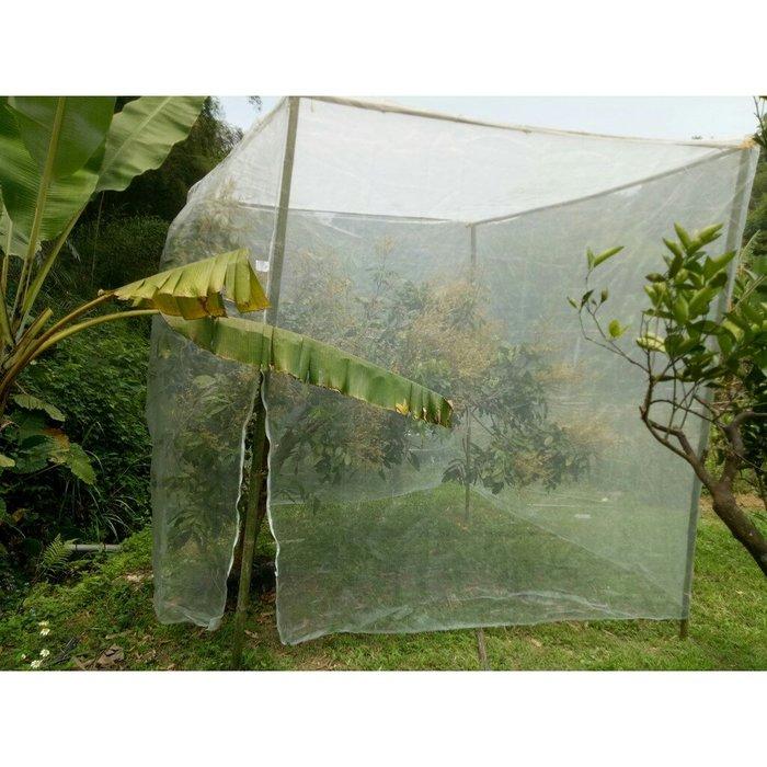 40網目,長5米*寬5米*高3米 防蟲網,網室自己搭,網室DIY 防蟲防鳥 有機 免套袋