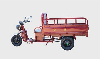 電動三輪車-WT019-鑽豹