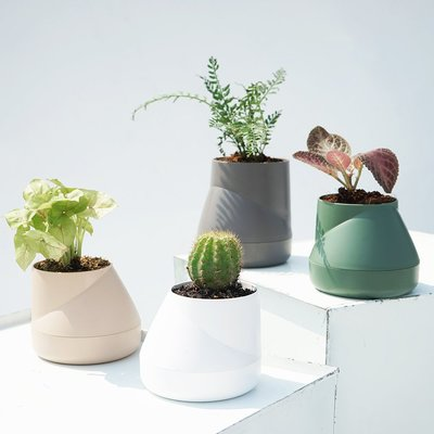 QUALY Hill Pot-山丘-花器S (4色)