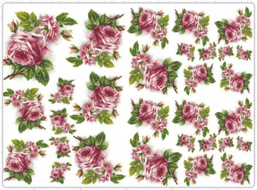 波蘭 Decoupage Paper(專用紙)A3編號PL-D-0333~蝶古巴特 餐巾紙拼貼 彩繪 黏土DIY手作材料