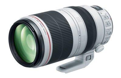 鏡花園 Canon EF 100-400mm F4.5-5.6L IS USM II 大白II (相機出租、鏡頭出租) 新北市