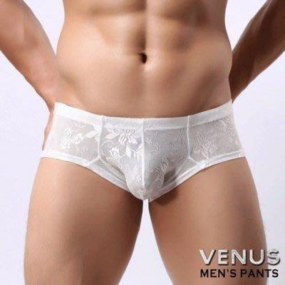 VENUS低腰性感緹花平角內褲白T030  0K1120000T03