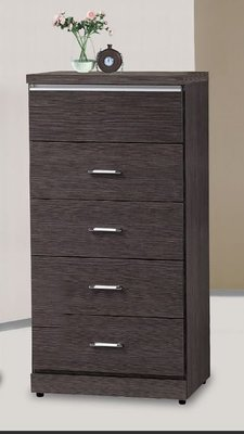 【南洋休閒傢俱】精選時尚斗櫃  置物櫃 收納櫃 設計櫃 造形櫃- 胡桃五斗櫃 CY-219-88
