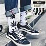 襪子 經典不敗 大麻葉 長襪 滿版 大麻葉 滑...