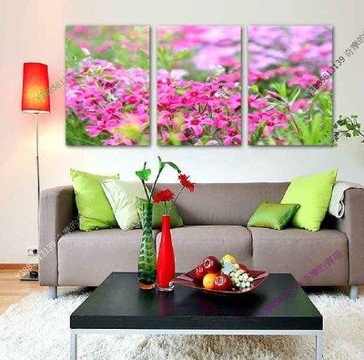 【50*70cm】【厚1.2cm】清新紅花-無框畫裝飾畫版畫客廳簡約家居餐廳臥室牆壁【280101_466】(1套價格)