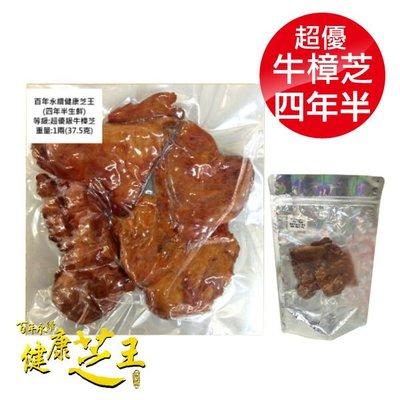 專品藥局 百年永續健康芝王 (四年半) 牛樟芝 生鮮品 37.5g x1兩【2012413】