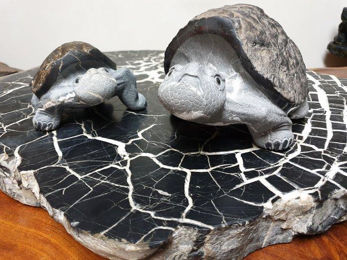 上和茶軒*台灣本土石雕龜作家 : 天淪人 老師*黑龜甲原皮&黑膽石原皮~極品對龜!