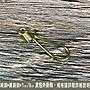 純銅 黃銅鉤 7CM 皮包外掛鉤 鑰匙鉤 鍊條鉤...