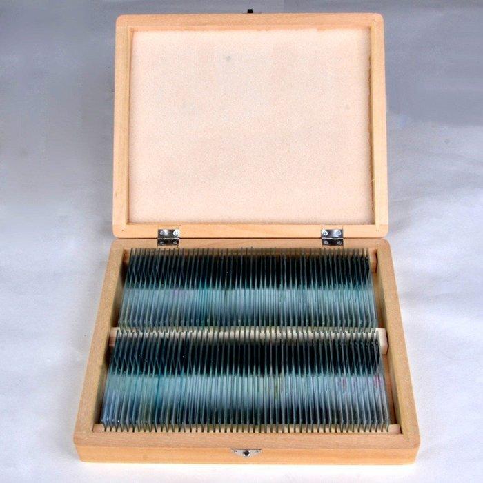 5Cgo【權宇】木盒裝 顯微鏡用中英對照生物切片標本100種 + 生物玻片標本彩色圖譜 中小學生教學課本 含稅會員扣5%