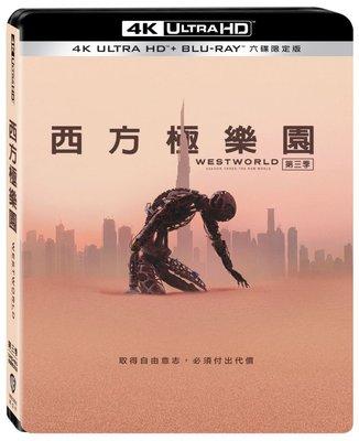 合友唱片 西方極樂園 第三季 4K UHD Westworld S3 UHD+BD (11/20)