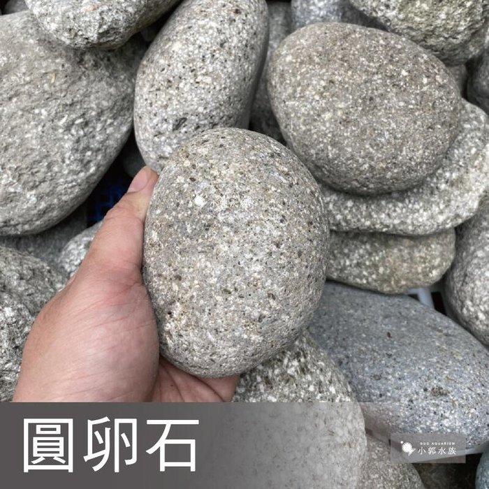 小郭水族-精選【圓卵石 5KG】水草造景缸 底沙 底砂 河道 底土 石頭