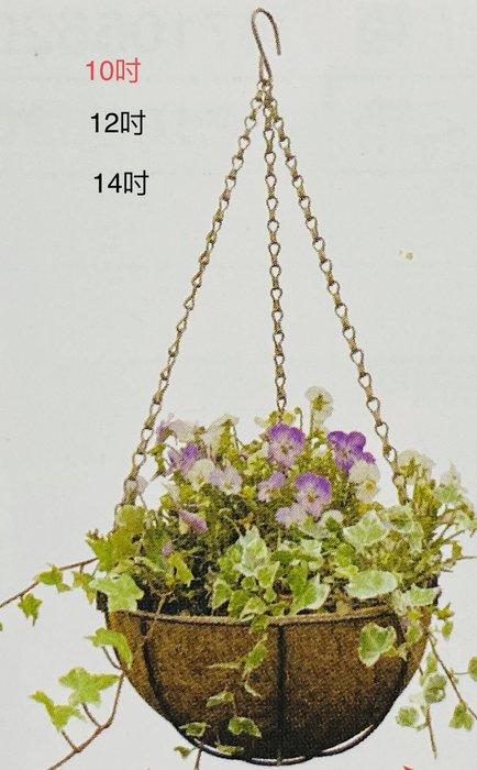 花卉吊籃14吋