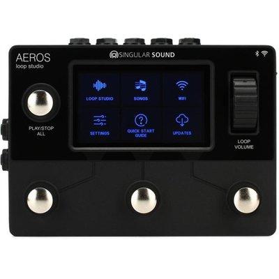 大鼻子樂器 Singular Sound Aeros Loop 循環效果器