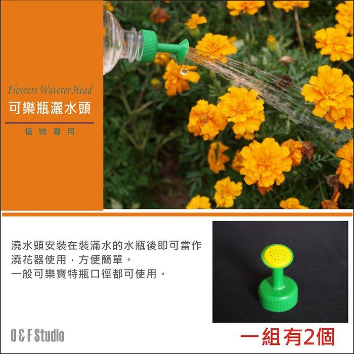 居家達人【A179】可樂瓶灑水頭 植物澆花器 盆栽種植專用澆花器 1組2個 花盆 肥料