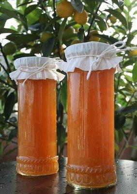 熊安心 金桔養生麥芽潤喉原液 古法煉製 天然飲品 750g