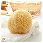 Omorfia 歐摩菲亞混合粉刺肌洗顏用希臘天然海綿 - 絲菲爾 3-3.5吋