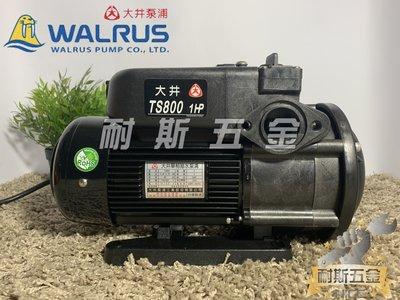 【耐斯五金】♨活動優惠♨TS800 1HP 大井WALRUS 電子靜音型抽水機 不生鏽水機『最便宜』