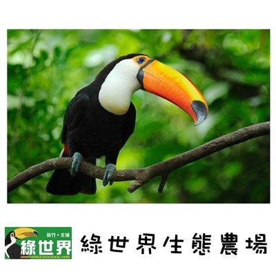 【新竹綠世界】假日不加價!新竹綠世界生態農場入園門票只要290元(MYDNA樂園優惠票)