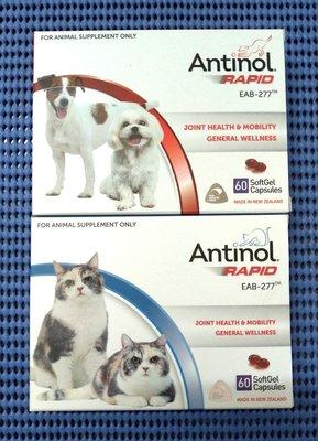 Antinol 安適得 犬貓用 60顆裝(酷版)