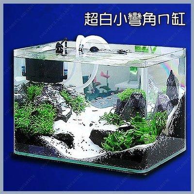 台北►►多彩水族◄◄台灣RISS日印《小彎角 超白玻璃 魚缸 / 30 × 19 × 21 cm》精緻、ㄇ缸 開放缸