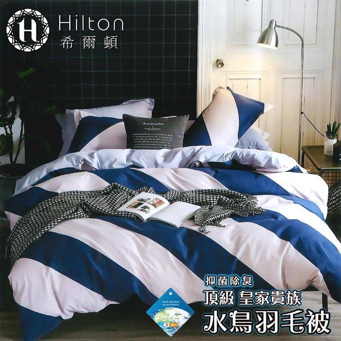 【Hilton希爾頓】皇家貴族頂級水鳥羽毛被2.2kg(簡尚)(B0899-22A)