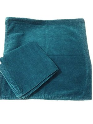 FRANC FRANC~抱枕套藍綠短絨款~原價2個1600元=