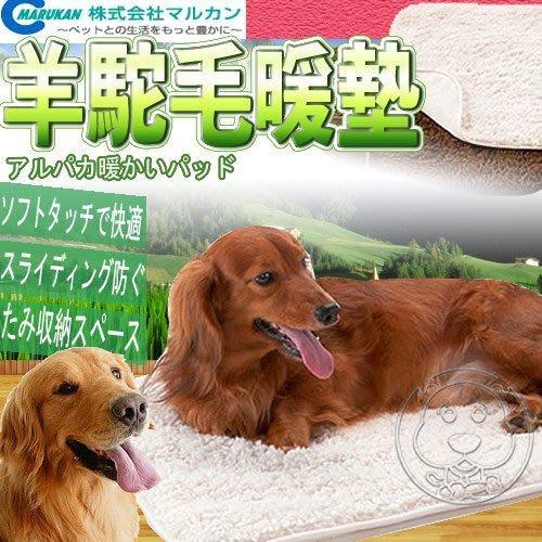 【🐱🐶培菓寵物48H出貨🐰🐹】MARUKAN》DP-481羊駝毛舒適暖墊L (2款顏色) 特價399元(限宅配)
