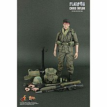 Hot Toys MMS135 PLATOON 殺戮戰場 PRIVATE FIRST CLASS CHRIS TAYLOR 1/6 figure 全新未開連啡盒