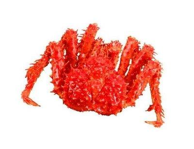 【年菜系列】帝王蟹/約1100g以上/隻~蟹肉鮮甜滋味讓人吮指回味 另有帝王蟹腳切盤龍蝦草蝦明蝦白蝦鮑魚生干貝