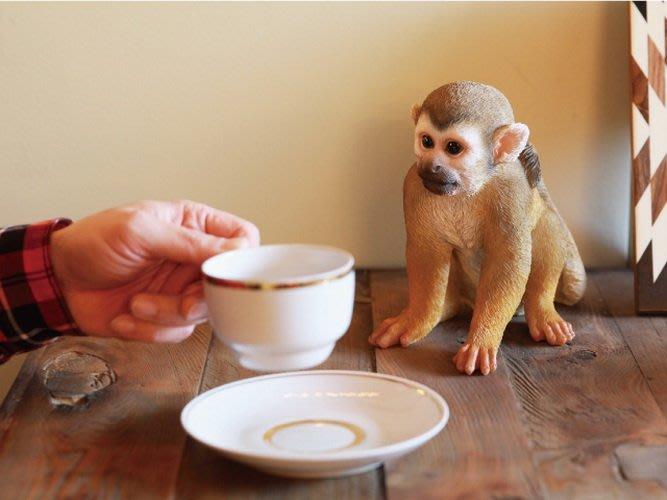【beibai不錯買】日系雜貨 zakka 日本進口 寵物存錢筒 松鼠猴