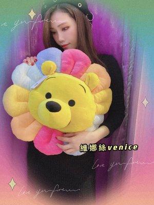 上海迪士尼2021維尼小花太陽花造型抱枕靠枕Venice維娜絲日本連線代購