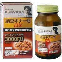 Bz Store 當天出貨日本 野口醫學研究所 納豆激酶 3000FU90粒 頂級版