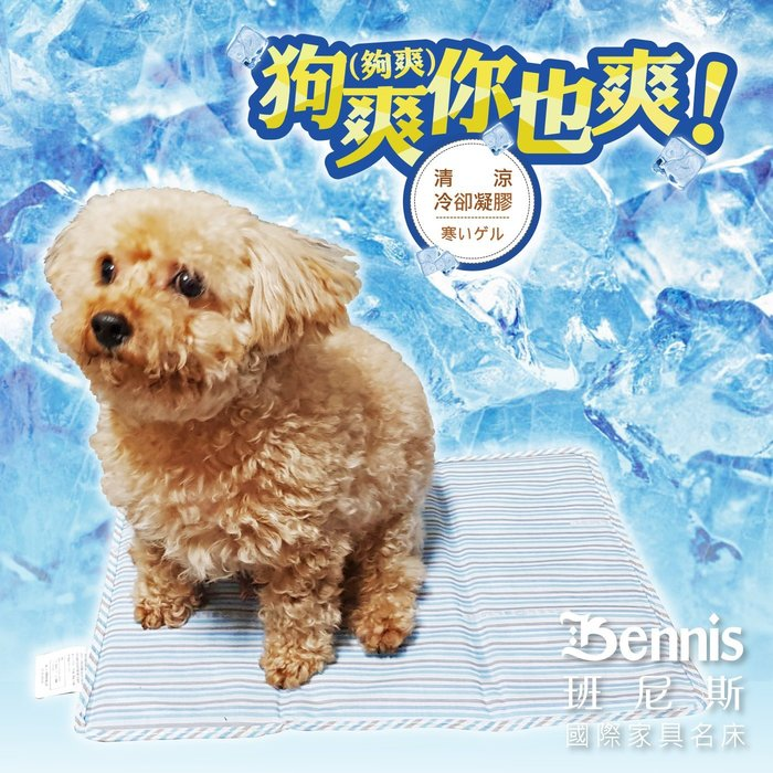 【班尼斯名床】~COOL‧清涼冷卻凝膠枕頭!涼墊!冰墊!坐墊!(本款為枕頭下標區)超取限六張內!
