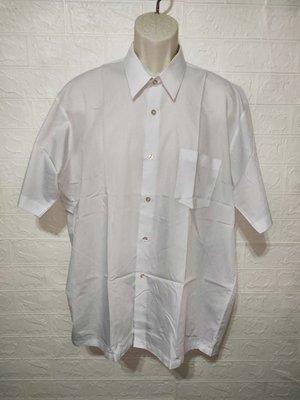 389大尺碼短袖白襯衫