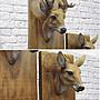 5Cgo【宅神】含稅會員有優惠521982642128 歐式家居背景牆壁裝飾樹脂鹿頭鹿角壁掛動物頭酒吧咖啡館店面裝飾