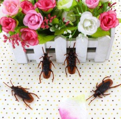 整人玩具 派對小物 假蟑螂 嚇到吃手手...