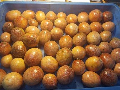 農損少量供應請先詢問滿天星百香果有機栽培無毒 自產自銷 一箱7斤