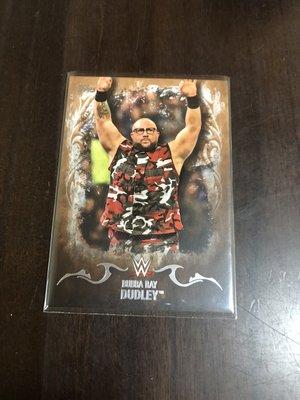 BUBBA RAY DUDLEY WWE  職業摔角選手卡 限45/99