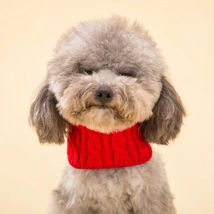 預售款 毛線圍脖狗狗圍巾泰迪比熊博美幼犬小型犬三角巾圍嘴領巾寵物飾品