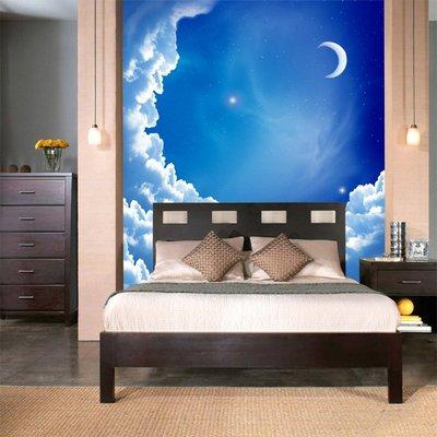 客製化壁貼 店面保障 編號F-223 月亮夜景 壁紙 牆貼 牆紙 壁畫 星瑞 shing ruei