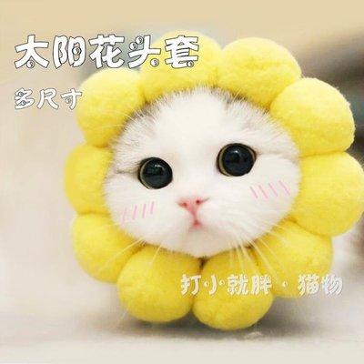 (免運)貓咪頭套搞笑裝飾帽防咬保暖可愛獅子帽生日變裝帽貓頭飾寵物貓帽【莉芙小鋪】