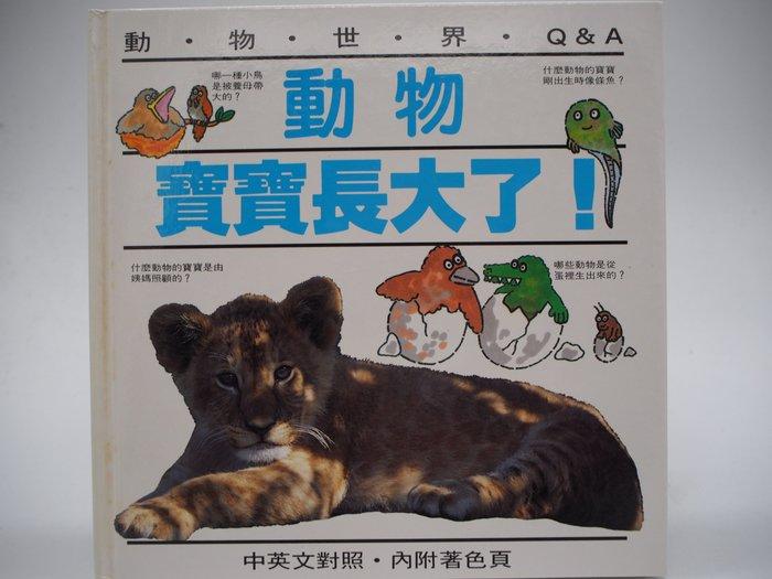 【月界二手書店】動物寶寶長大了:中英文對照·附著色頁-動物世界Q&A(絕版)_東方出版_原價150 〖少年童書〗AIY