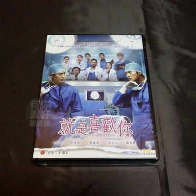 全新韓劇《就是喜歡你》 [Brain] DVD 全20集 申河均 崔貞媛 趙東赫 鄭進永主演